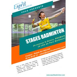 Stage d'entraînement Esprit Badminton